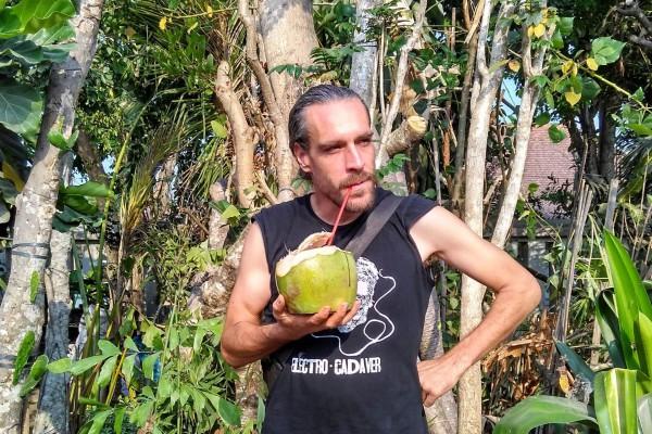 Comment (ne pas) innover avec une noix de coco (2/2)