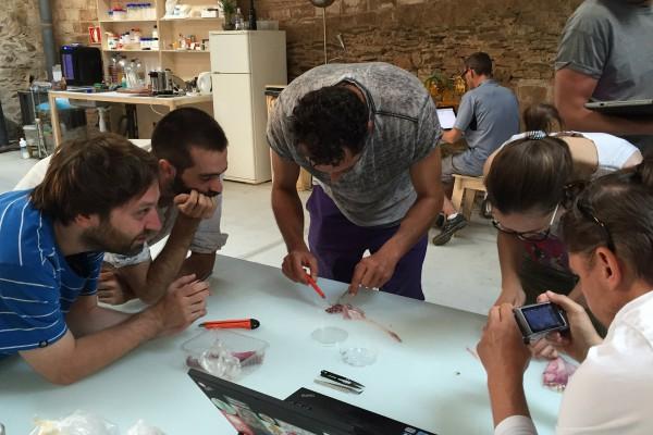 Au bootcamp Biology Zero à Valldaura, cet été, les participants découvrent et apprennent le biohack. © CC Biology Zero