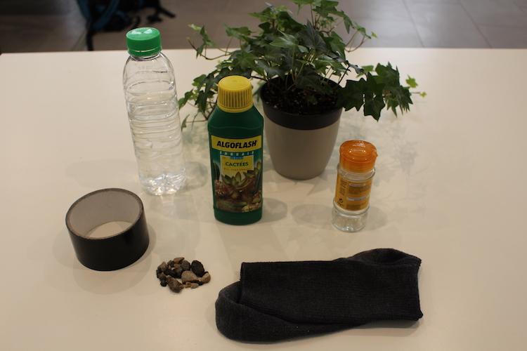 Hydroponie: avoir la main verte sans trop la bouger
