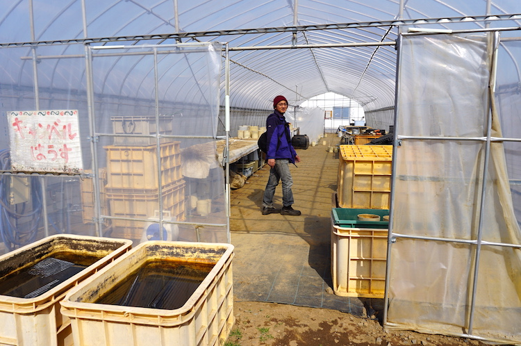 Agriculture: the smart DIY greenhouse from Japan : Makery