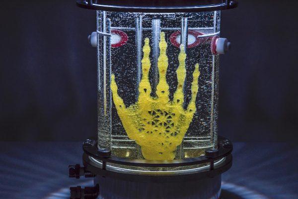 «Regenerative Reliquary» d'Amy Karle, grand prix YouFab 2017. © Amy Karle
