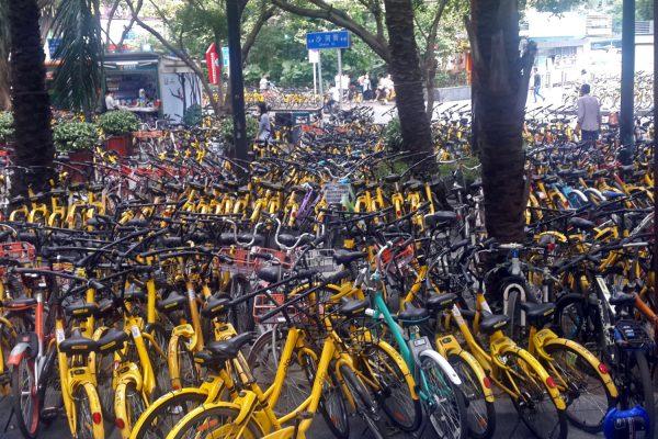 Public bicycles in Shenzhen, China. © Chris CC BY-SA 2.0