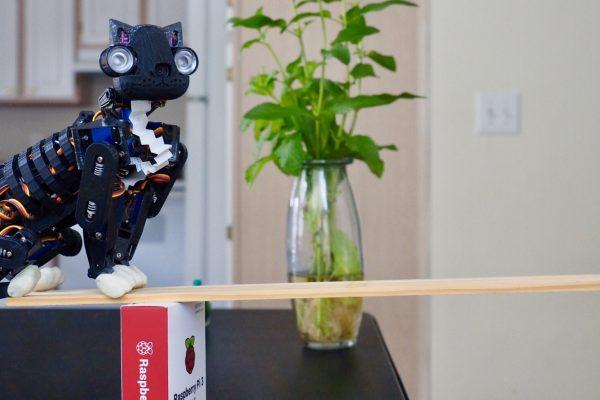 OpenCat, Rongzhong Li's extraordinary DIY robot cat. © Rongzhong Li