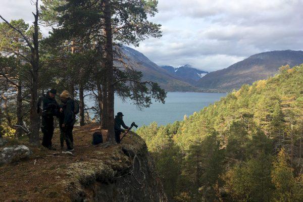 Ecologie des sens au Field Notes en Laponie
